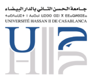 Logo_UHIIC_ANA0apI.png.300x300_q85_upscale