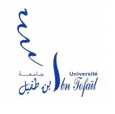 universite ibn tofail