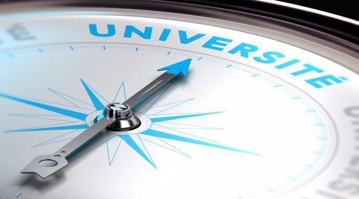 gouvernance universite