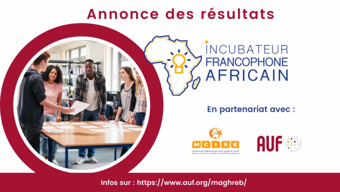Incubateur Francophone Africain 2021 : 30 projets retenus